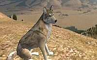 WolfQuest: Amethyst Mountain Deluxe + Wolfquest 2.5 Thumb