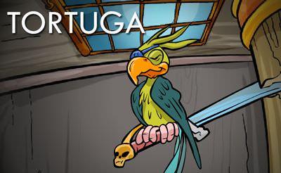 Tortuga 1